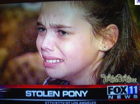 Stolen-pony